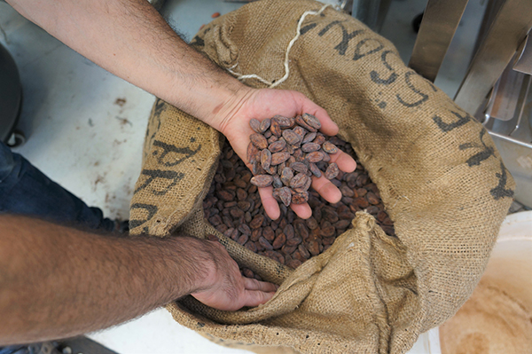 bag of raw cacao beans